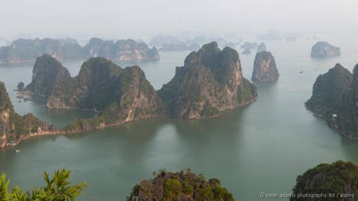 Phong cảnh hùng vĩ của vịnh Hạ Long, Việt Nam, với hệ thống hang động và các dạng địa chất đá vôi. Các cấu trúc bằng đá hình sau hoạt động của nước biển dâng cách đây 500 triệu năm. Vịnh có khoảng 1.600 hòn đảo lớn nhỏ, hầu hết không có người ở. Ảnh: Alamy