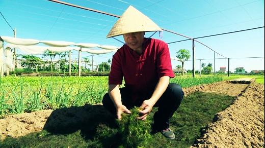 Nón lá là vị cứu tinh của Martin Yan trong điều kiện khí hậu nắng nóng.