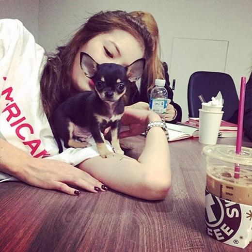 HyunA nhí nhố khoe ảnh bên cún con