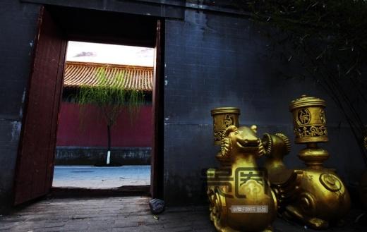 Tượng vàng là sản phẩm nhân tạo, được phủ gỗ đặc biệt