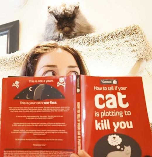 Nó biết tôi đang đọc cuốn sách nó không thích, nên nó đang âm mưu giết tôi kìa