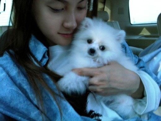 Mặc dù dị ứng với lông chó, nhưng Gyuri (Kara) không thể nào cưỡng lại tình yêu dành cho những chú cún đáng yêu. Khi ôm chó, cô đã dùng đến thuốc dị ứng để có thể vui đùa cùng chúng.