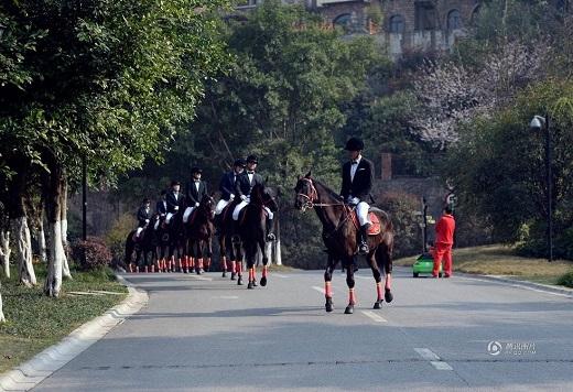 Thú vị trước lễ rước dâu bằng đội kỵ mã siêu hùng hậu