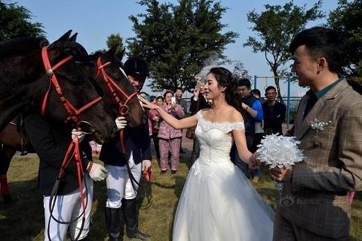 Nhiều người nhận xét đứng bên những chú ngựa, trông cô dâu như là một nàng công chúa vậy