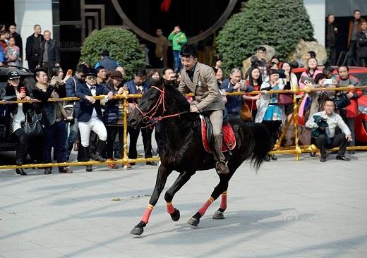 Chú rể biểu diễn tài năng cưỡi ngựa của mình.
