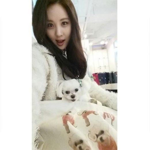 """Seohyun (SNSD) cùng chú chó cưng Dubu chụp lại khoảnh khắc đáng yêu: """"Gương mặt y chang Dubu!! Các bạn hãy tìm Dubu thật sự nhé!""""."""