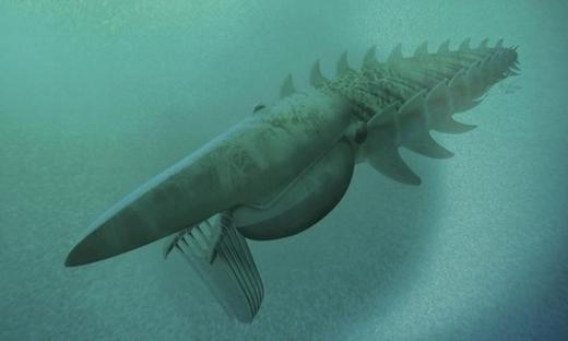 """Hóa thạch tôm hùm """"khủng"""" to lớn hơn cả con người"""