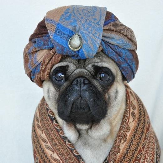 Diện trang phục truyền thống của Ba Tư.