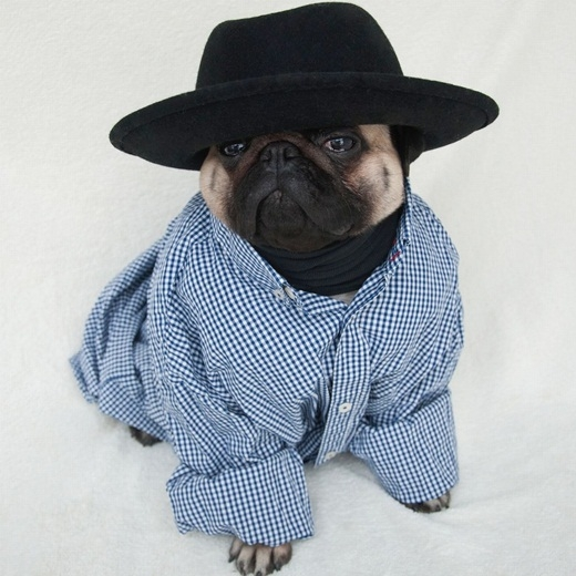 Sẵn sàng đi nghỉ mát cùng với áo sơ mi và mũ fedora.