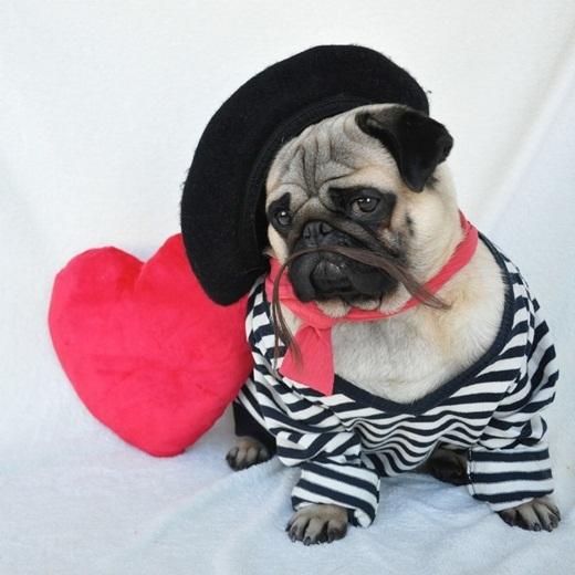 Sẵn sàng đi hẹn hò với chiếc áo sọc và khăn quàng màu hồng lãng mạn.
