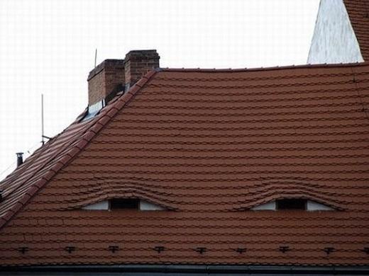 16. Mái nhà này quan sát được từng hành động của bạn, như thể đang đợi thời cơ và rơi vào bạn.