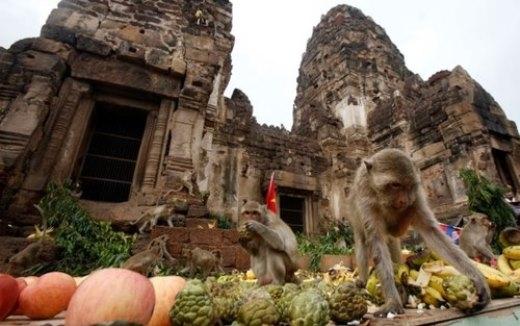 Những điều bạn nên bỏ túi nếu muốn đến Thái Lan