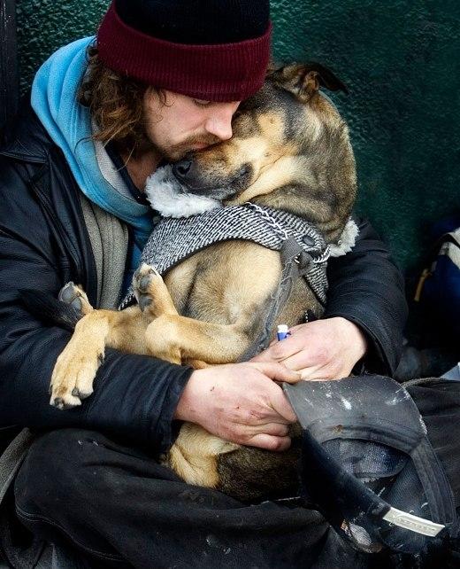 Rơi nước mắt trước những tình bạn đẹp giữa chó và người