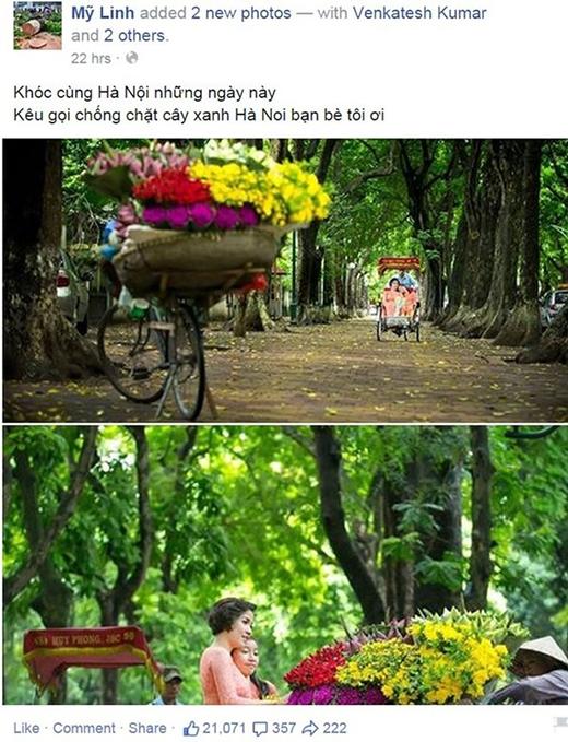 Mỹ Linh, Phan Anh xót xa khi hàng loạt cây xanh bị chặt