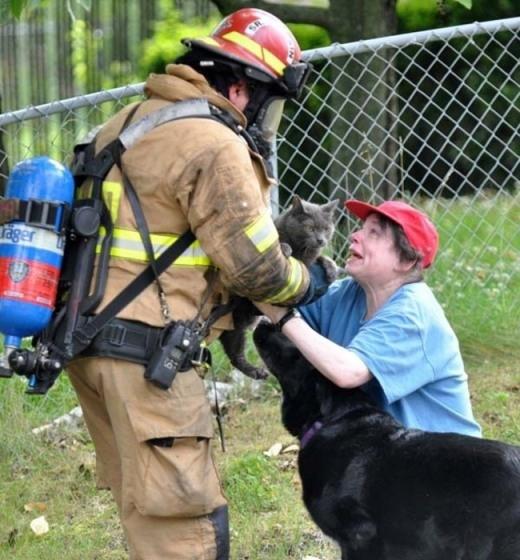 Một chú mèo có khi chỉ là một con vật nuôi với người này, nhưng có khi lại là cả gia đình đối với ai đó. Và tìm lại người thân cho người phụ nữ chính là hành động tuyệt vời mà anh lính cứu hoả này đang làm.