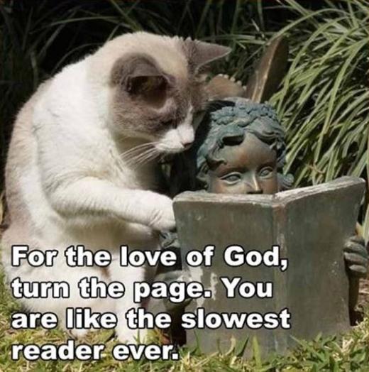 Hãy qua trang tiếp theo đi. Làm sao lại có người đọc chậm như thế nhỉ?