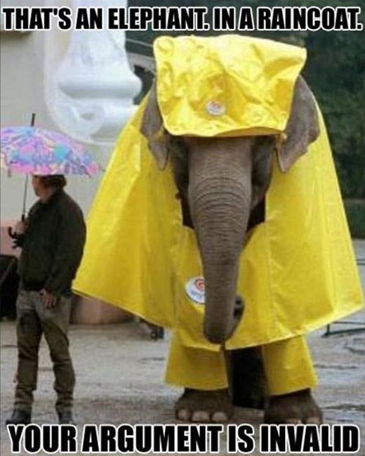 Đó không phải là con voi, mà là cái áo mưa.