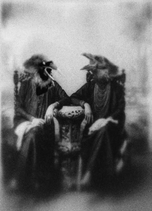 Chỉ đơn giản là hai người phụ nữ đội mũ chim ngồi nói chuyện với nhau.