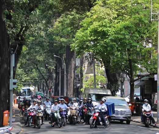 Nhiều người phải đứng chờ đèn tín hiệu giao thông dưới cái nắng chói chang