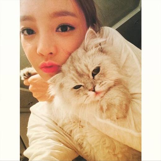 Goo Hara khoe ảnh bên cô mèo đáng yêu sau khi mi nó: Hãy hôn Cha Cha đi, môi của bạn sẽ trở nên đỏ hồng rất đẹp cho xem.