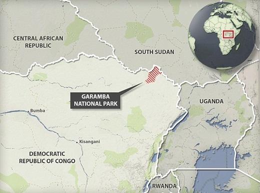 Công viên quốc gia Garamba ở nước Cộng Hòa Congo.