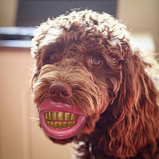 Sao răng tôi vàng dữ vậy?