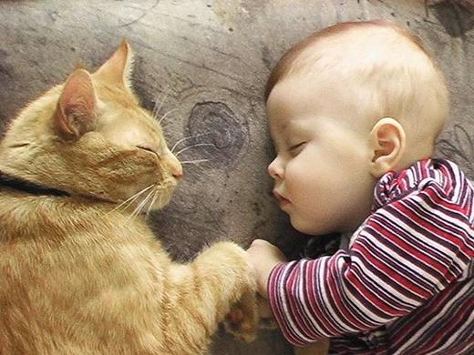 Ngủ cũng phải có nhau.