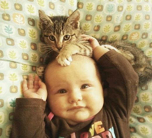 Mẹ ơi ! Cậu ấy trèo lên đầu con.