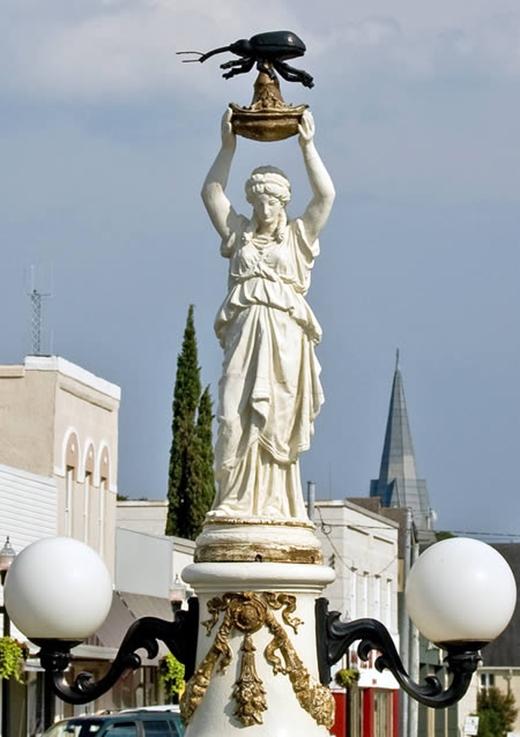Bức tượng mang tên Boll Monumant này tọa lạc tại trung tâm thành phố Enterprise, Alabama, Mỹ. Ý nghĩa của bức tượng nhằm thể hiện sự tri ân một loại bọ cánh cứng vì ảnh hưởng của nó đối với nền nông nghiệp và kinh tế thời bấy giờ. Tuy nhiên không hiểu bằng cách nào mà nó luôn nằm trong danh sách thảm họa điêu khắc.