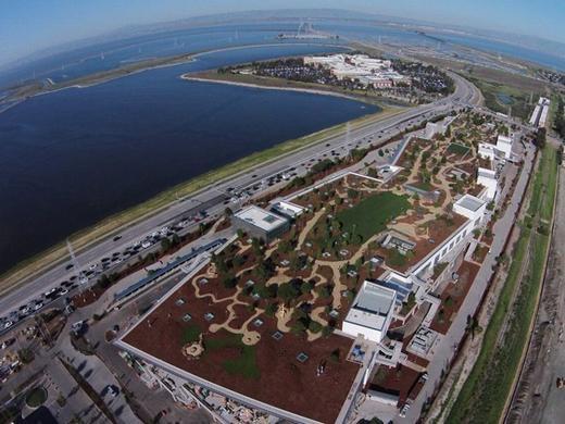 Từ hình ảnh cho thấy, phần lớn phần mái nhà đang được phủ xanh bởi cây cối, có diện tích tương tự một công viên. Toàn bộ khu nhà rộng gần 40.000 m2 không chỉ đủ chỗ cho 2.800 nhân viên hiện tại, mà còn có thể chứa được thêm một lượng nhân viên mới về sau.