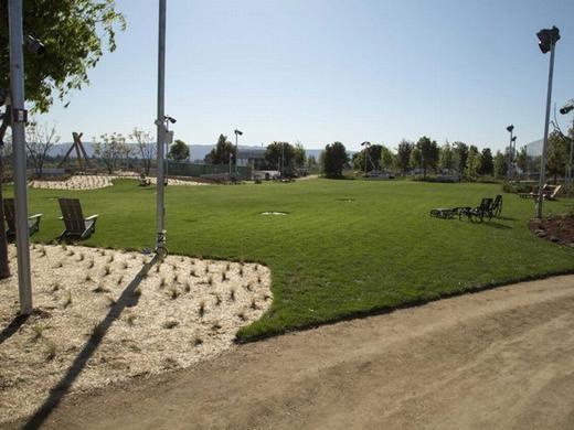 """Trên """"công viên"""", có khoảng 400 cây được trồng."""
