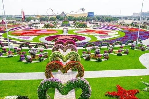 Tất nhiên không thể nào thiếu vườn hoa lớn nhất thế giới, Dubai's Miracle Garden.