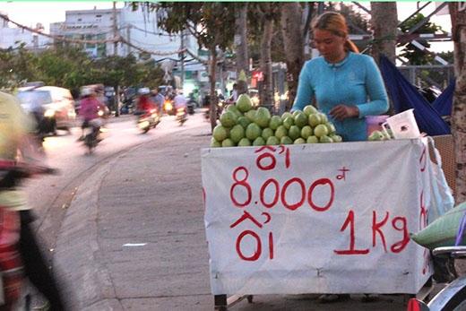 Ổi Đài Loan bán ở lề đường chỉ có giá 8.000 đồng/kg. Ảnh:Zen Nguyễn.