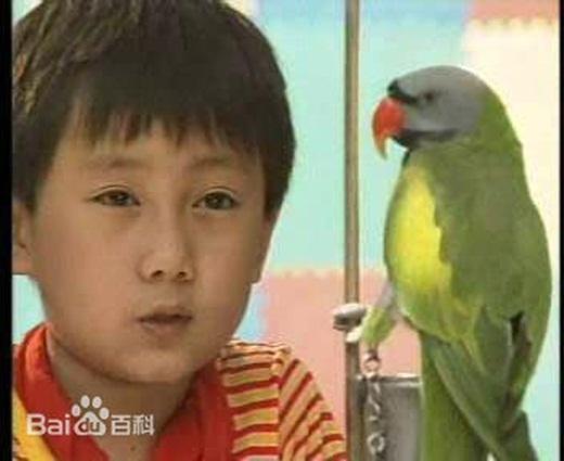 Giang Dĩ Trinh vai Bảo Bảo ngày ấy