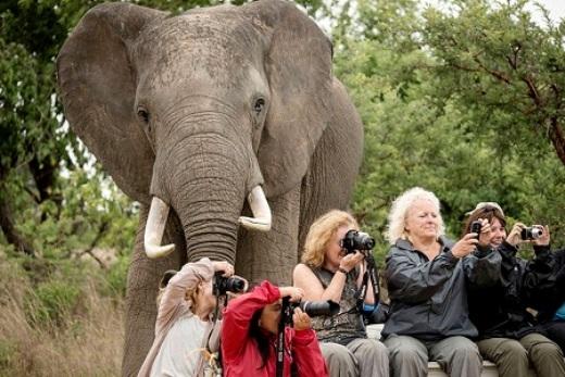 Không biết họ có cho mình mượn máy ảnh không nhỉ?