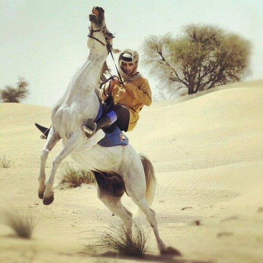 Là một vị Thái tử nhưng Hamdan rất giỏi cưỡi ngựa, đã từng giành được nhiều huy chương về đua ngựa trong các cuộc thi trong vài ngoài nước.