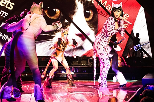 Katy Perry diện bộ đồ catsuit màu hồng bó sát cơ thể và cùng dàn vũ công cũng trong trang phục mèo.