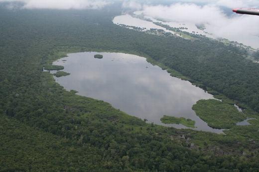 Các hòn đảo nổi dày 3 mét, có diện tích từ vài chục mét vuông đến hàng trăm mét vuông, hình thành từ các khối cỏ được tập hợp trong mùa lũ.