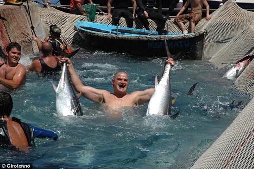 Có tên gọi là nghi lễ 'La Mattanza', lễ hội này diễn ra hàng năm ở đảo Sardinia, Italy. Theo người dân địa phương thì lần đầu tiên lễ hội đánh bắt cá ngừ này diễn ra cách đây 600 năm.