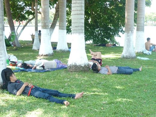Còn tại các thành phố lớn thì công viên có cây xanh luôn là địa điểm nghỉ mát lý tưởng vào buổi trưa