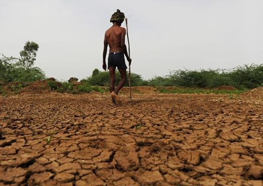 Nắng nóng kinh hoàng trong những tuần qua đã cướp đi sinh mạng của hơn 2.200 người ở Ấn Độ