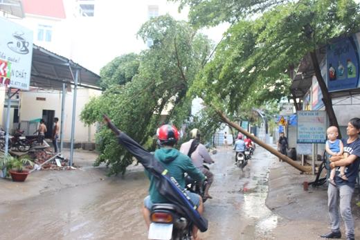 Theo đó, vào khoảng 15h, cơn mưa nặng hạt kèm dông gió lớn bắt đầu xuất hiện tại phường Tăng Nhơn Phú B (quận 9).