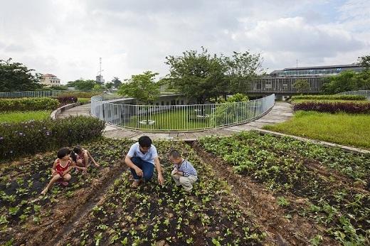 Trường học độc đáo này còn tổ chức những lớp học đặc biệt về trồng trọt và phát triển bền vững. Các học sinh được thực hành thoải mái trong những khu vườn thuộc sở hữu của trường học này.