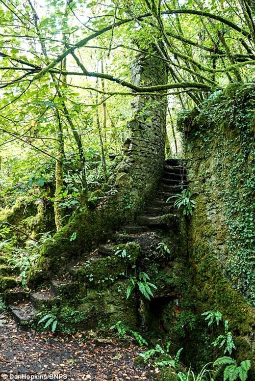 Xưởng sắt Fussells nằm gần ngôi làng thuộc trị trấn Mells, Somerset được xây dựng vào khoảng cuối thế ki 18, đầu thế kì 19. Xưởng sắt này đã từng là nơi hoạt động của khoảng 250 người, sản xuất ra những công cụ bằng sắt như liềm, xẻng, tuy nhiên đã ngưng hoạt động vào năm 1990. Bị bỏ hoang lâu năm, xưởng sắt này đã bị rêu phong bám đầy, trở thành một địa điểm tham quan ma mị khiến du khách không thể bỏ qua. Nếu du lịch nước Anh bỏ quên địa điểm này thì thật là lãng phí.