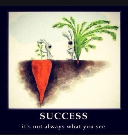 Đừng vội phán xét mức độ thành công của người khác dựa theo những gì bạn thấy
