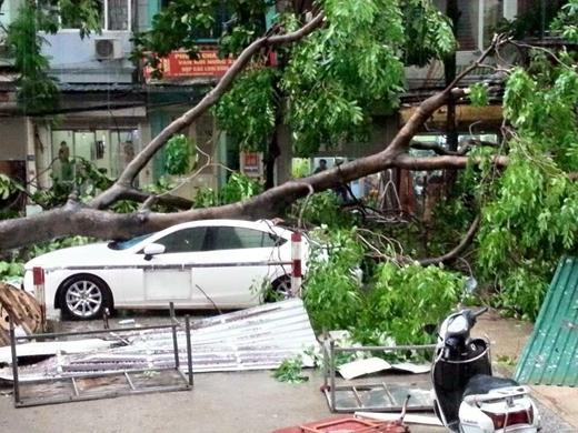 Trải nghiệm kinh hoàng trong giây phút suýt chết vì bão lớn tại Hà Nội