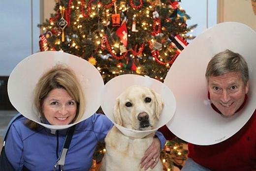 Một kiểu mũ thời trang mới của cả ba chăng?