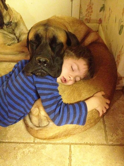 Hai bé ngủ ngoan ghê chưa!