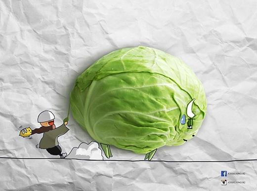 Chú bò tót bắp cải có vẻ không được vui lắm với trò đùa của chú bé.