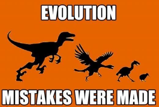 Không lẽ đây là thuyết tiến hóa mới?